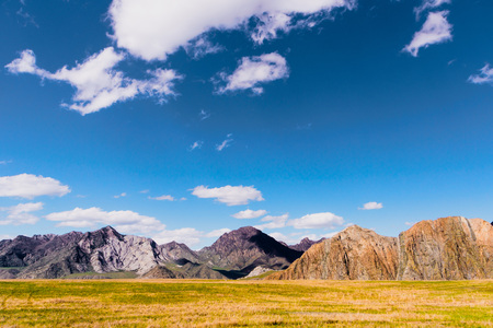 incredible landscape of Altai mountain valley with rock 免版税图像