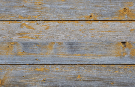 wood texture background Imagens