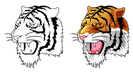 Tiger head cartoon coloring page for kids