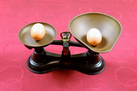 the heaviest egg Foto de archivo