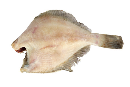 prepack: Frozen fish. Flounder. Isolation on a white background. Clipping path.