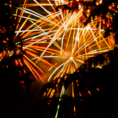 Outbreaks of fireworks in the night sky, photographed through the trees. Stock Photo