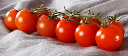 Branch of the fresh tomatoes on grey cloth Stock Photo
