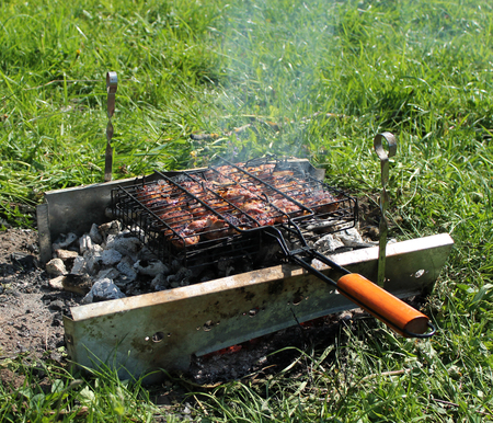 Summer. Barbecue. Grill with meat on coals Stock Photo