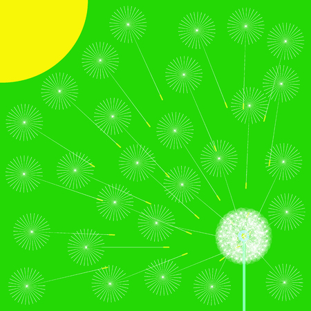 Green spring background with stylized dandelion and sun. Vector illustration