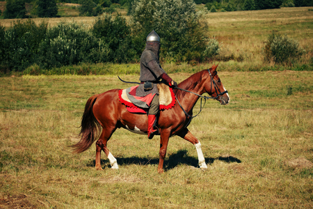 The knight. Medieval armored equestrian soldier with lance. Rider on  horse is in the summer field Stock Photo