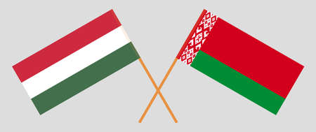 Crossed flags of Belarus and Hungary. Official colors. Correct proportion. Vector illustration