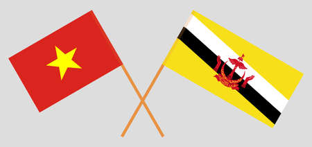 Crossed flags of Brunei and Vietnam. Official colors. Correct proportion. Vector illustration