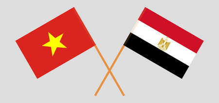 Crossed flags of Egypt and Vietnam. Official colors. Correct proportion. Vector illustration  イラスト・ベクター素材