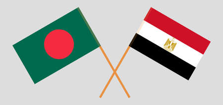 Crossed flags of Egypt and Bangladesh 일러스트