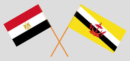 Crossed flags of Egypt and Brunei