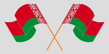 Crossed and waving flags of Belarus