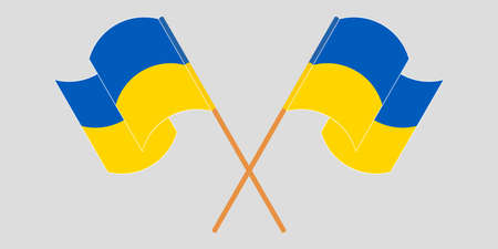 Crossed and waving flags of the Ukraine. Vector illustration