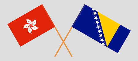 Crossed flags of Hong Kong and Bosnia and Herzegovina 向量圖像