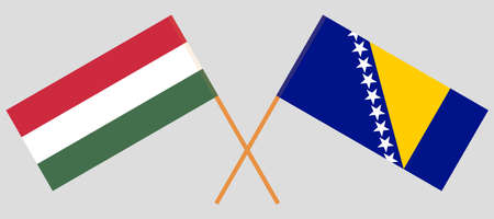 Crossed flags of Bosnia and Herzegovina and Hungary