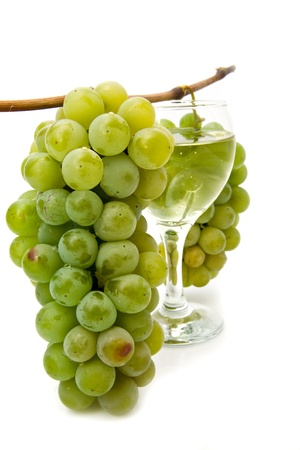 vine and glass of wine on a white background Stock Photo - 15403790