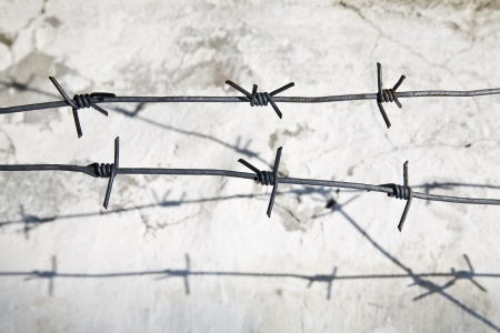 barbed wire on the background of the old wall photo