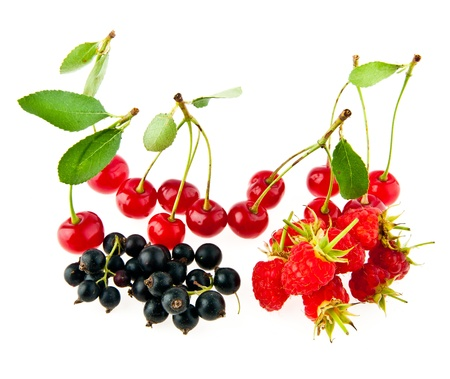 currant,cherry and raspberry on a white background  Stock Photo - 17517172