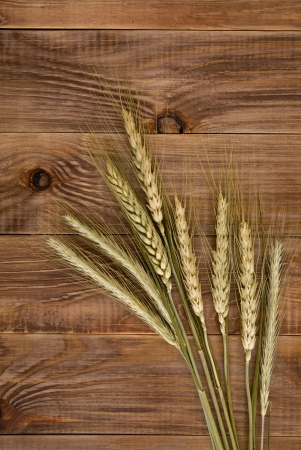 wheat on the wooden background  photo