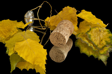 leaves and cork on a black background photo