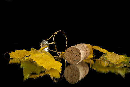 leaves and cork on a black background Stock Photo - 25807265