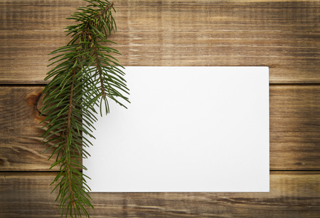 branch of fir-tree and business card on a wooden background photo