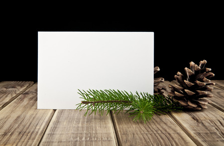 branch of fir-tree and business card on a black background photo