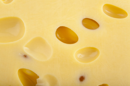 cheez: cheese as background