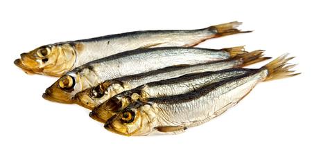 sardine can: smoked sprat on a white background Stock Photo