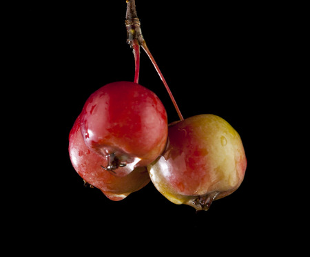 shinning light: apples on a black background Stock Photo