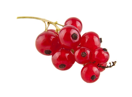 currant berries isolated on white background closeup