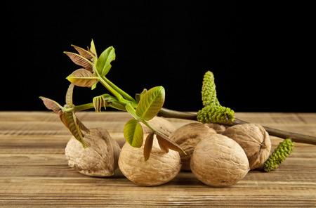 walnuts on black background closeup