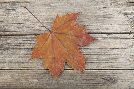 autumn leaves on wooden background closeup Stock Photo