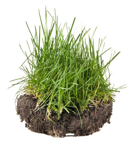 sol et herbe isolé sur fond noir