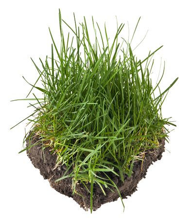 soil and grass isolated on a black background Banque d'images