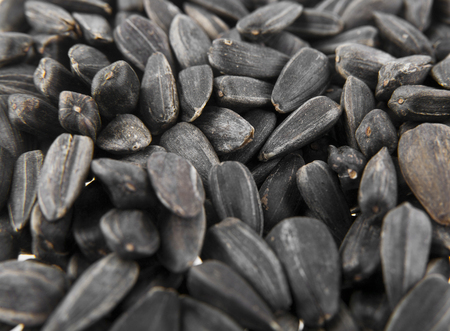 sunflower seeds as a background