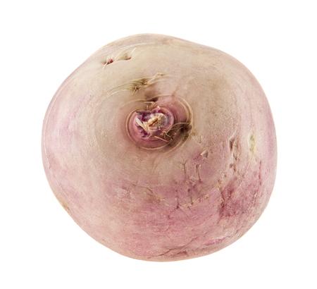 turnip isolated on white background Zdjęcie Seryjne