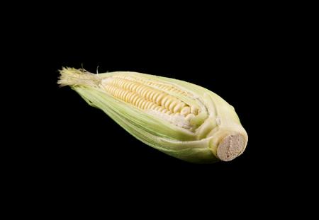 corn on a black background