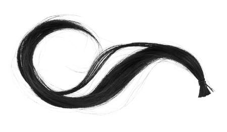 curl of black hair isolated on white background close-up