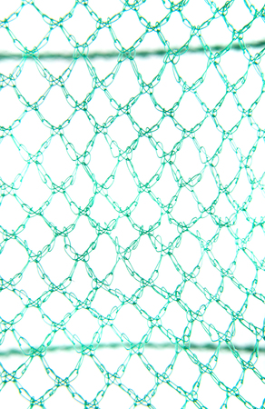 Green mesh isolated on white background close-up Stock Photo