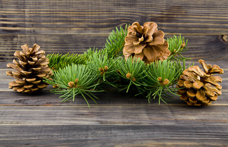 cones and a branch of a Christmas tree on a wooden background