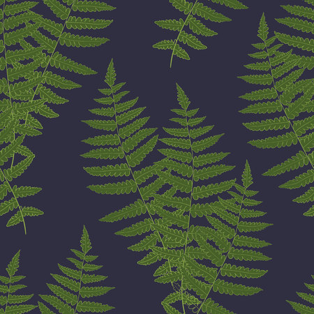 floral: Fern frond silhouettes seamless pattern. Vector illustration Illustration