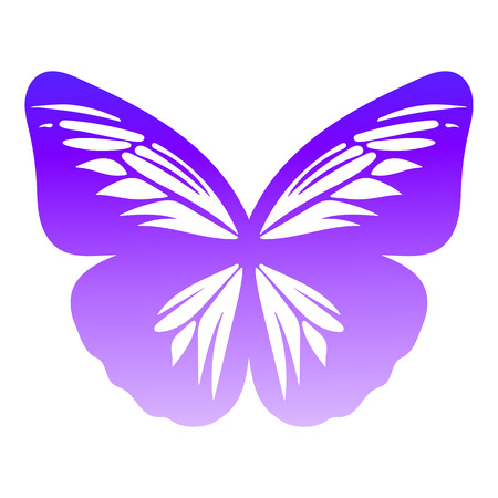 Butterfly on white background, vector illustration.