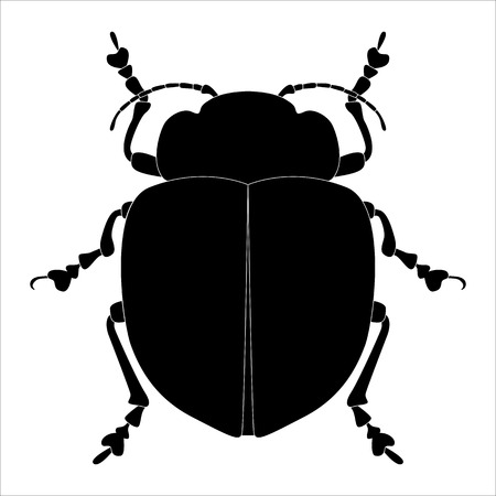Insect silhouette. Sketch of bug isolated on white background. Vector illustration