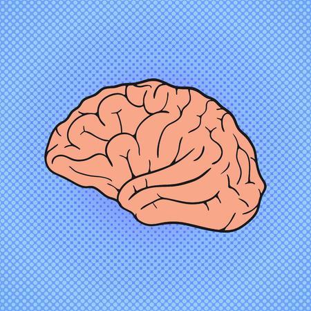 Comic Human brain. Pop Art vintage vector illustration Illustration
