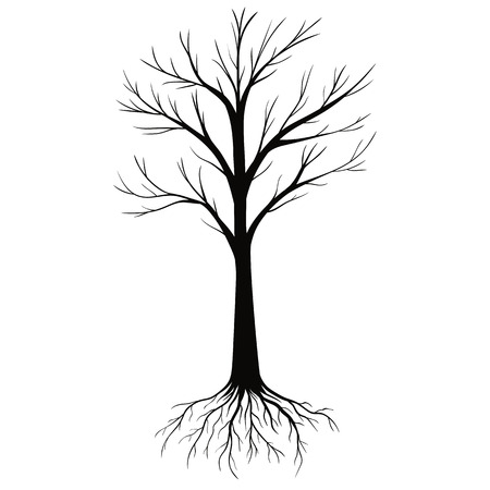 Silhouettes of Tree with Roots isolated on white background. Vector Illustration. Illustration