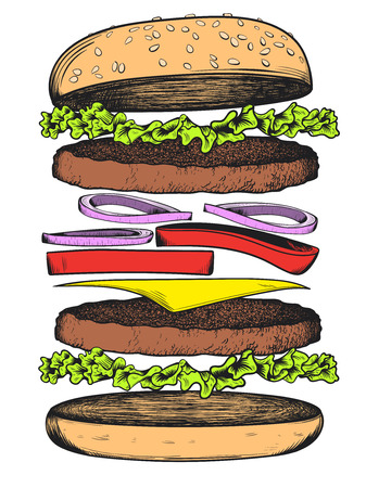 Burger sketch on white background. Vector illustration