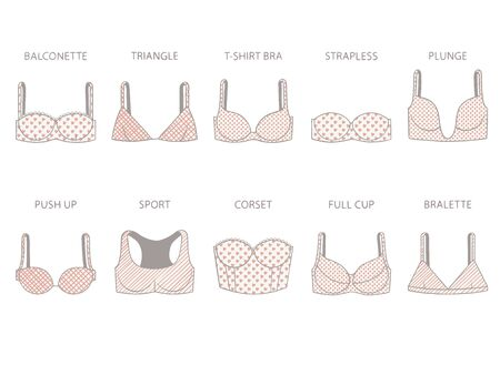 Types of womens bra with various print. Vector illustration