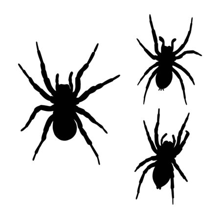 Collection of spiders silhouettes isolated on white background. Vector illustration Ilustração