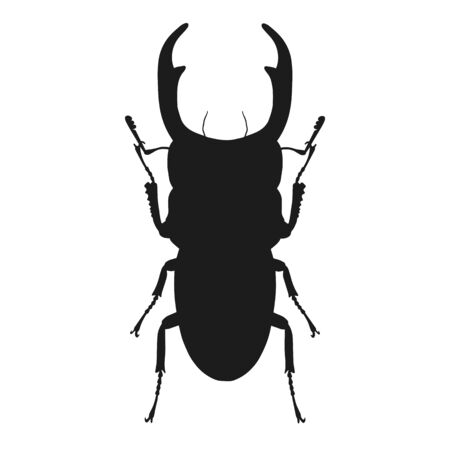 Silhouette of bug isolated on white background. Vector illustration